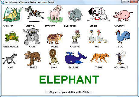 animaux i