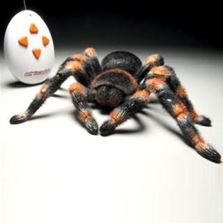araignée radiocommandée