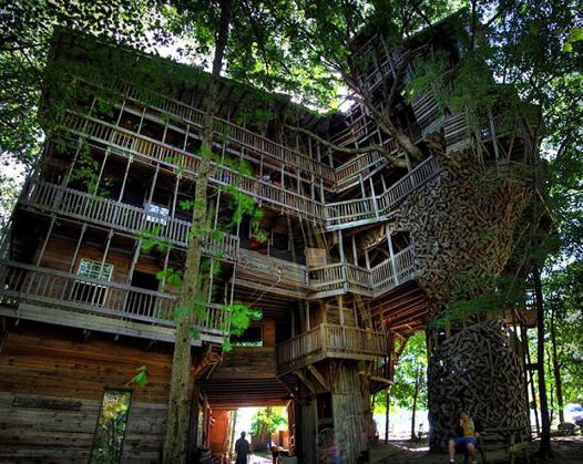 arbre et maison