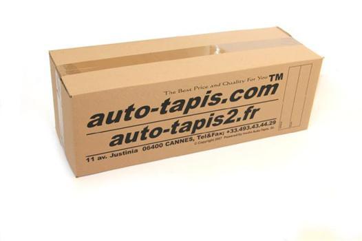 auto tapis 2