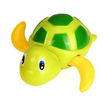 bain tortue