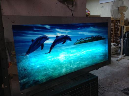 cadre lumineux dauphin