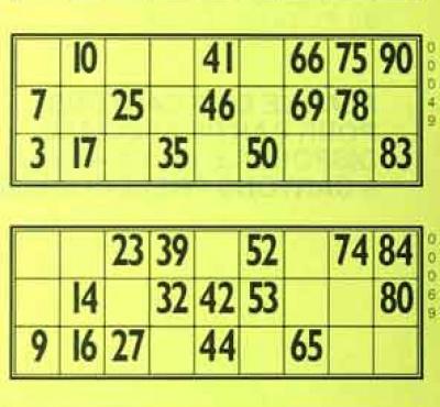 carton loto bingo