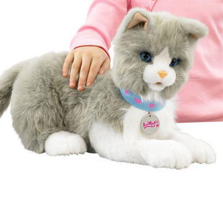 chat interactif peluche