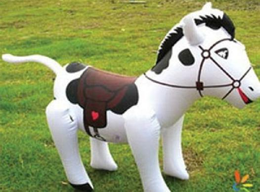 cheval gonflable