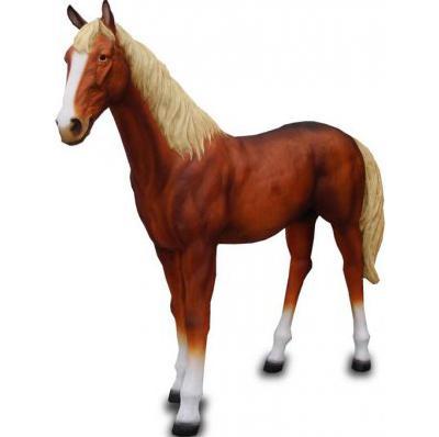 cheval marron
