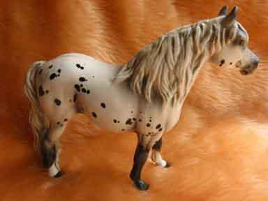 cheval pony