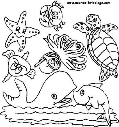 Avis Coloriage Animaux De La Mer Connaitre Le Comparatif