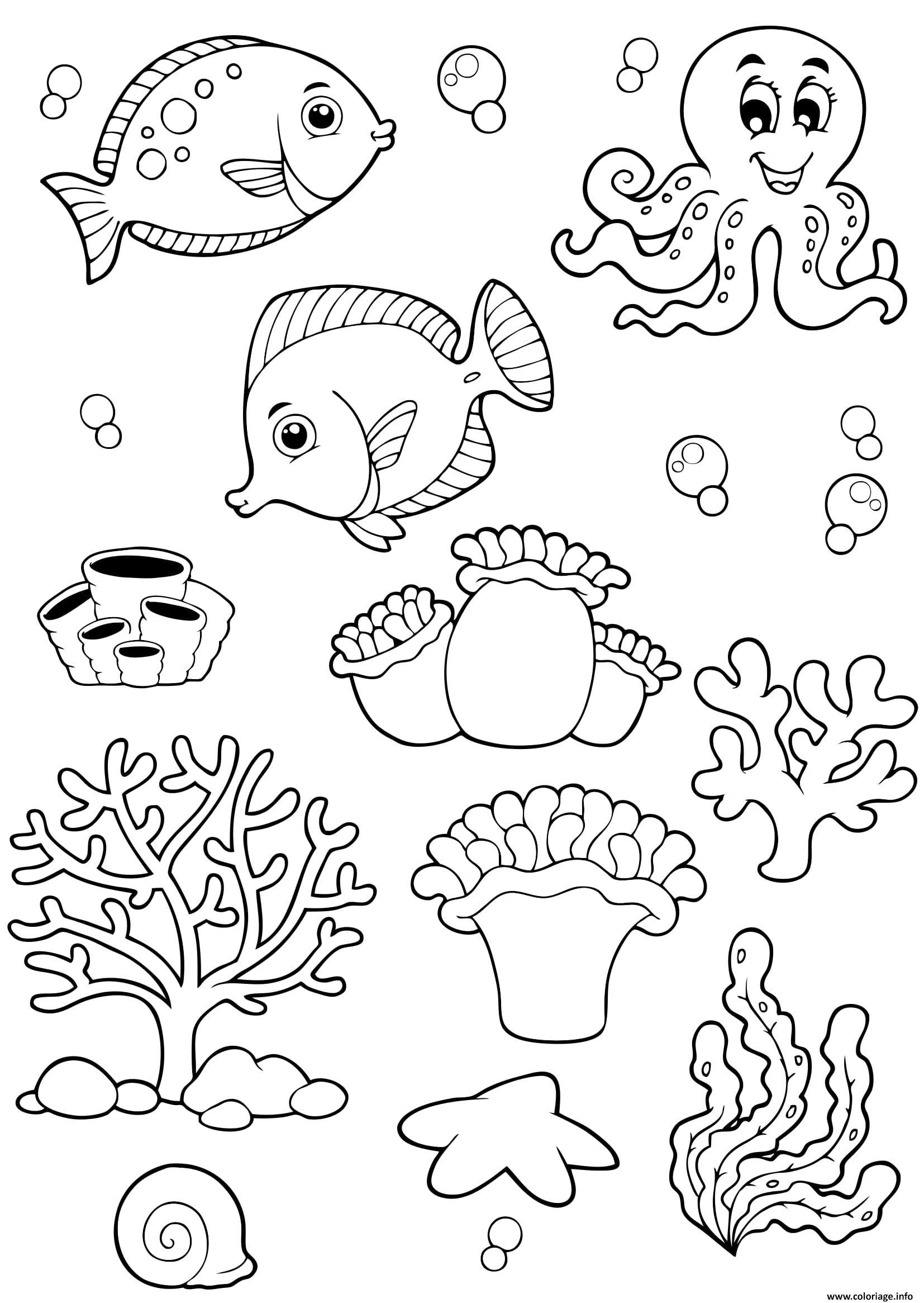 coloriage animaux de mer