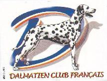 dalmatien club francais