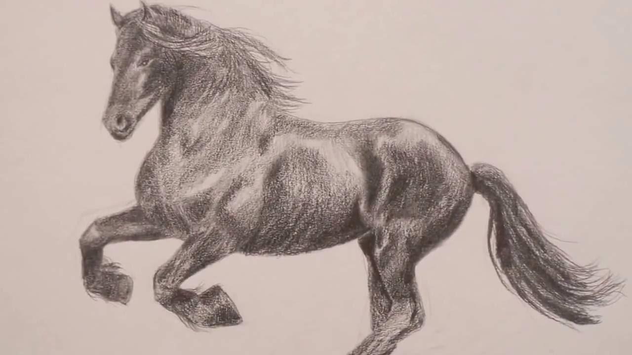 dessin cheval realiste