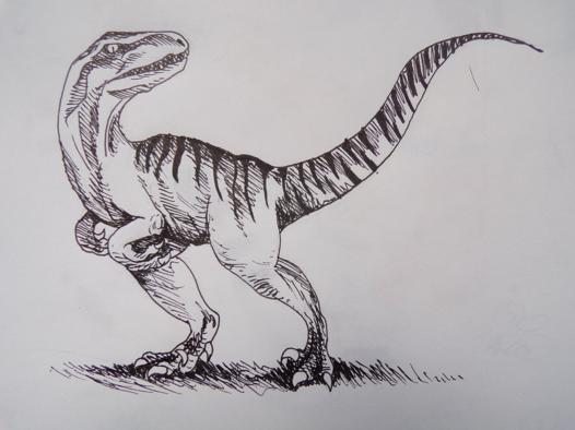 dessin velociraptor