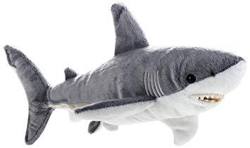 doudou requin