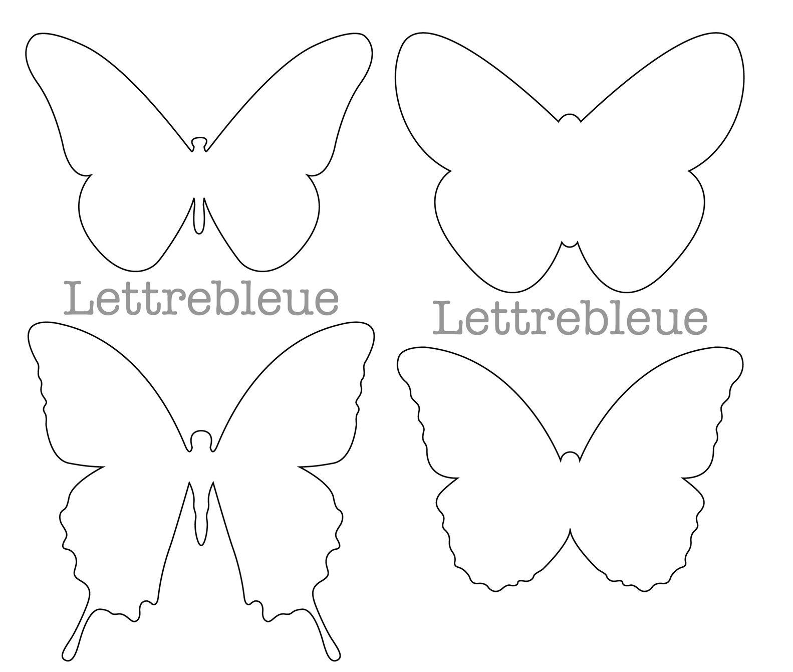 forme papillon