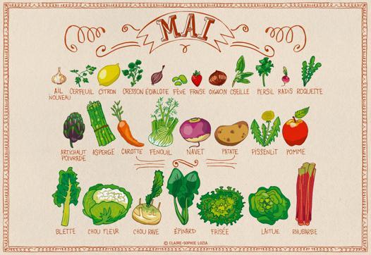 fruit et legume v
