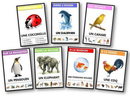 jeu de 7 familles animaux