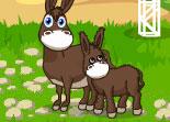 jeux de chevaux hopital