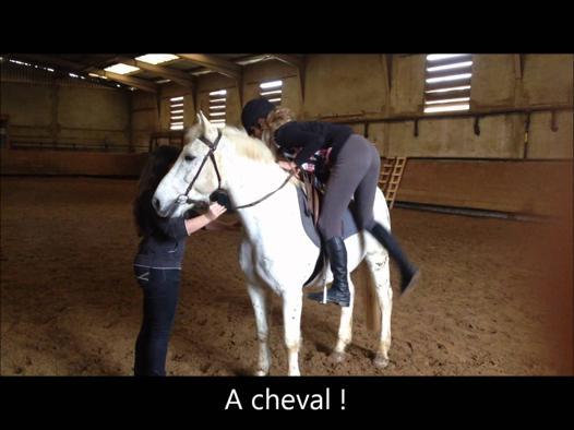 jeux de s occuper d un cheval