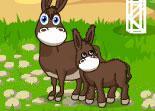 jeux hopital pour chevaux