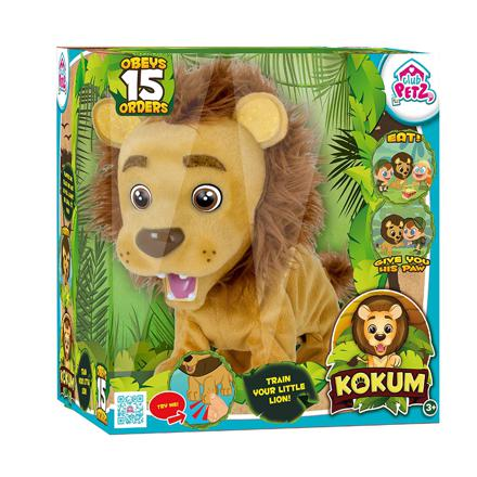 kokum lion