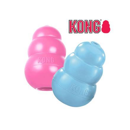 kong jouet
