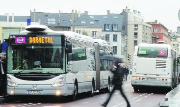 la crea bus