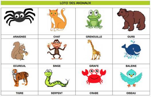loto animaux