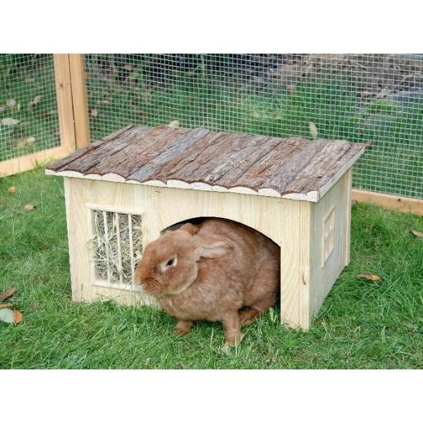 maison des lapins