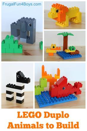 modele construction duplo