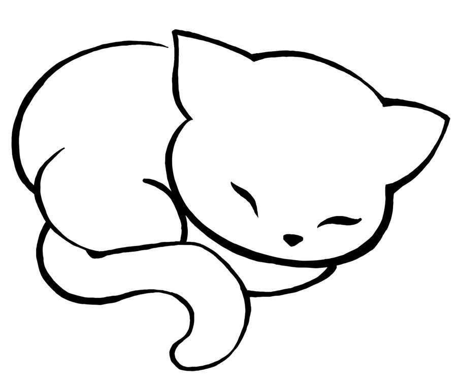 modele dessin chat