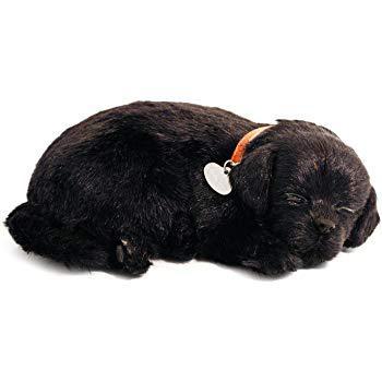 peluche labrador noir