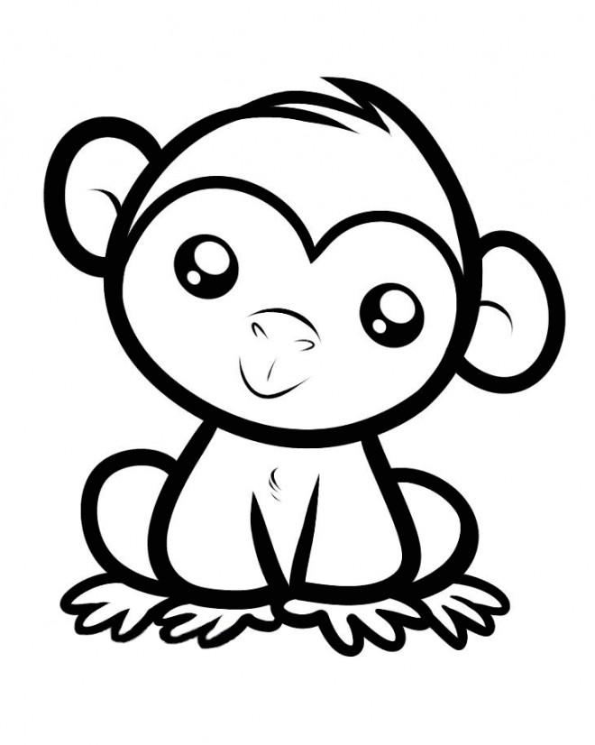 petit singe dessin