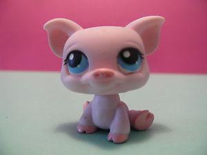 petshop cochon