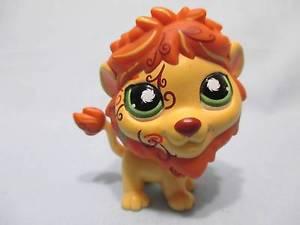 petshop lion