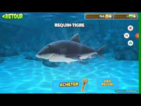 requin de jeux