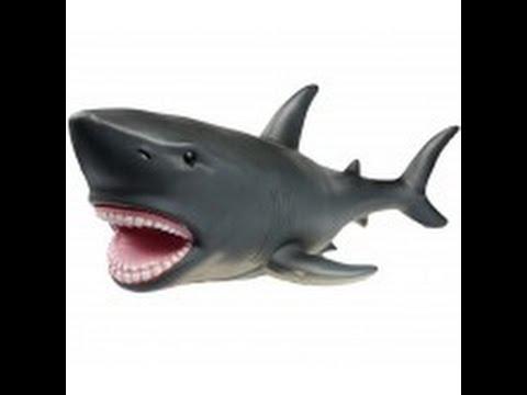 requin plastique jouet