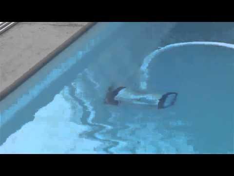 robot piscine piranha