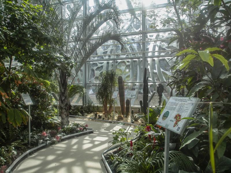serre botanique