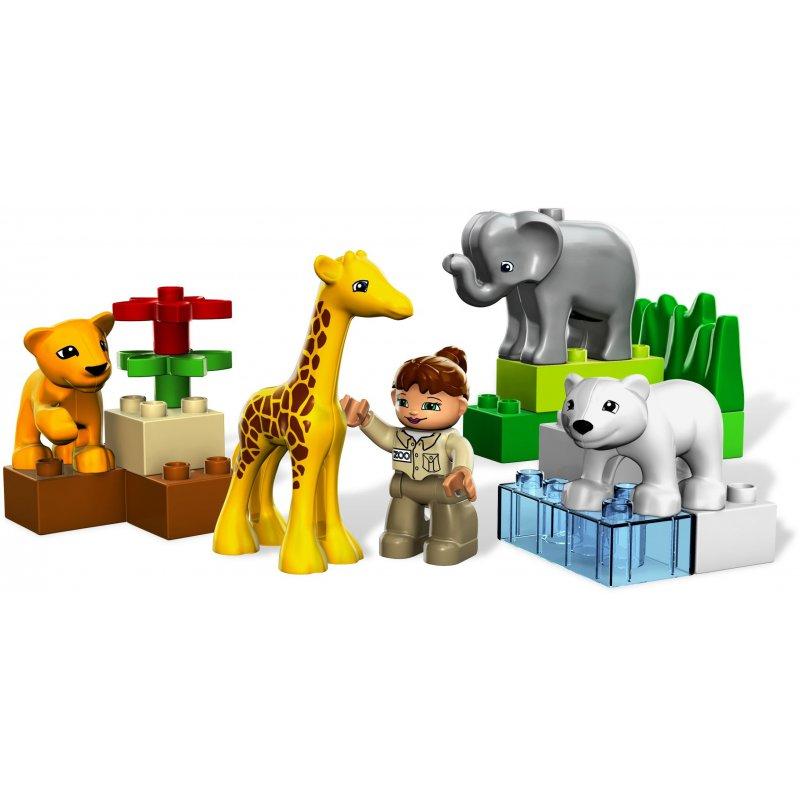 zoo duplo